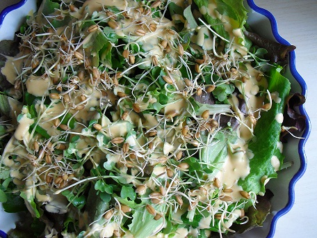 Voedwel, natuurlijk voedingsadvies, salade met kiemen