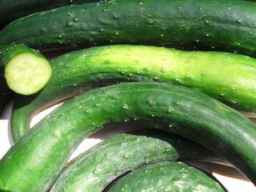 Voedwel, natuurlijk voedingsadvies, komkommer