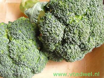 Broccolisoep