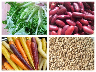 Voedwel, evenwichtige vegetarische voeding